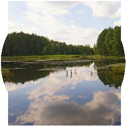 Jezioro Bagienne